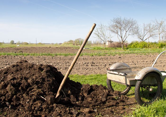 The Eco-Gardener: Learning from Compost
